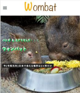 ウォンバット紹介サイトのトップ画面